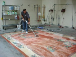 Phoenix Arizona Carpet Cleaner